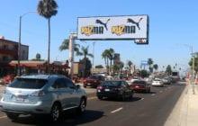 WOW Media Growing in Los Angeles